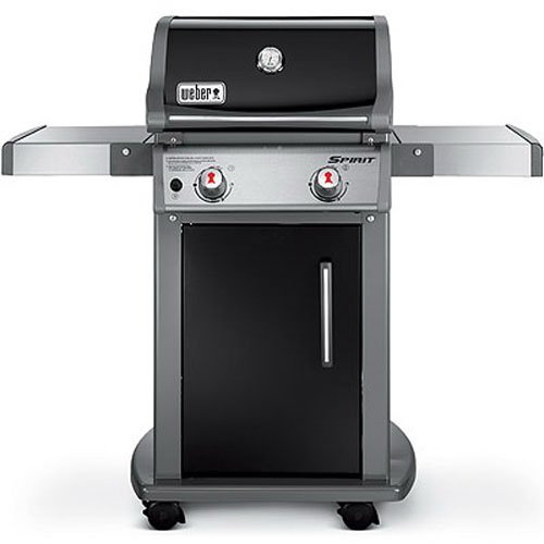 Designer Gasgrill best small gas grill the guide everyday grillman